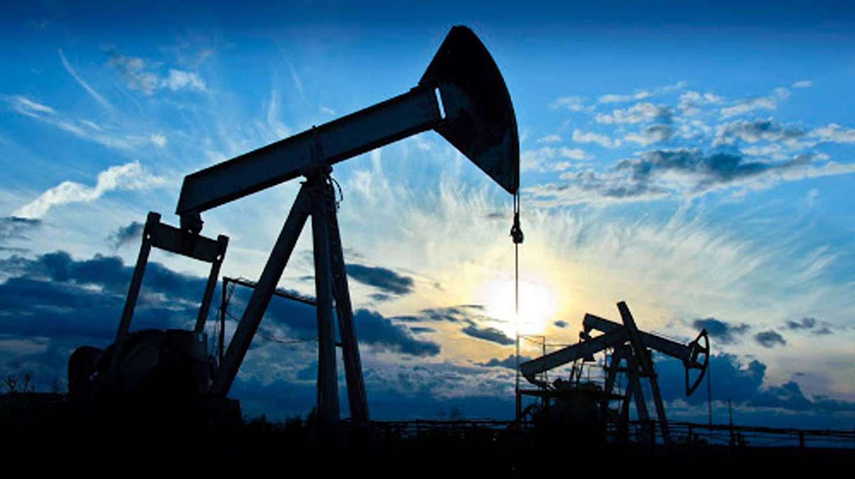 Vista Oil & Gas incremento 56% su producción de crudo y redujo sus costos  en el primer trimestre ? Revista Petroquimica, Petroleo, Gas, Quimica &  Energia